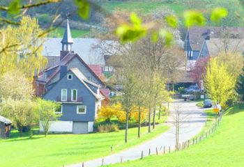 beienbach-1-bild-detailseite