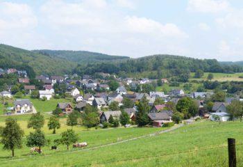 landschaft-gruen-PS-30-m